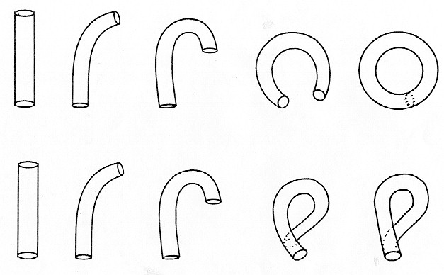 Figure 6. Construction of torus (upper row) and Klein bottle (lower row)